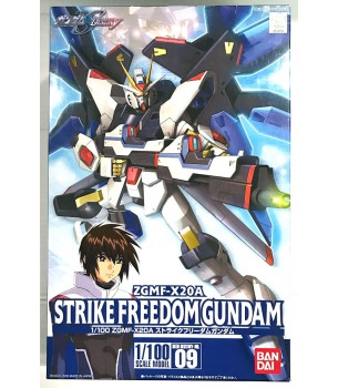 Gundam Seed Destiny: 1/100...